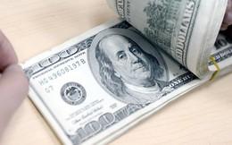 Tỷ giá trung tâm ngày 8/1 giảm 10 đồng