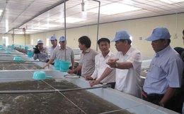 7 tỉ người trên thế giới ăn tôm Việt