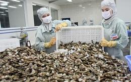 Xuất khẩu tôm sẽ cán mốc 3,1 tỷ USD