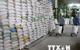 Theo dõi sát tình hình để điều hành hiệu quả việc xuất khẩu gạo