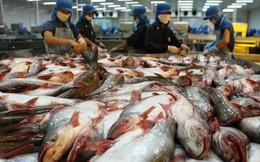 Ngành thủy sản đối mặt với hàng loạt khó khăn, ngư dân điêu đứng