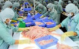 Thêm 2 doanh nghiệp được phép xuất khẩu cá da trơn vào Hoa Kỳ