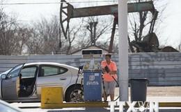 Đợi chờ cuộc họp của nhà sản xuất, giá dầu lùi về mốc 40 USD