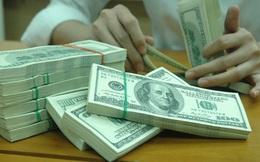 NHNN mua USD trở lại cho dự trữ ngoại hối