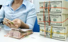 USD kỳ hạn: Doanh nghiệp dễ bị thiệt!