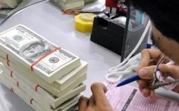 Phát hành trái phiếu ngoại tệ trong nước: FED giúp Việt Nam