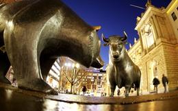 Phiên 15/11: Khối ngoại bán ròng nhẹ trên HoSE, mua ròng đột biến trên Upcom