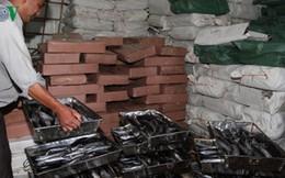 Quảng Trị tiêu hủy 60 tấn hải sản đông lạnh
