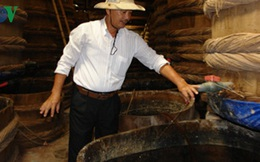 Vì sao nước mắm Phan Thiết yếu thế trên thị trường?