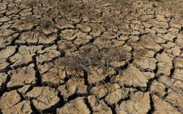 ADB viện trợ 3 triệu USD cho VN khắc phục hạn, mặn