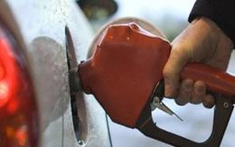 Chính phủ tăng ưu đãi thuế cho xăng dầu Dung Quất