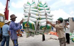 Trúng thầu 150.000 tấn gạo không tác động đến thị trường lúa gạo
