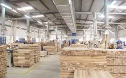 """Xuất khẩu gỗ: Có """"sóng cả"""" nhưng vững """"tay chèo"""""""