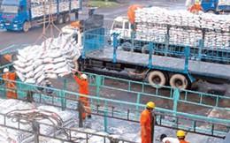Xem xét bỏ Quy hoạch thương nhân kinh doanh xuất khẩu gạo