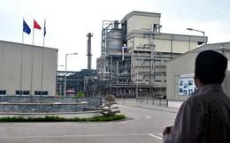Phạt chủ quản dự án Nhà máy xơ sợi Đình Vũ hơn 50 tỷ