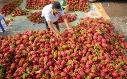 Năm nay, rau quả Việt dự kiến xuất ngoại 2,5 tỷ USD
