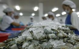 Ả-rập Xê-út tạm dừng thông quan mặt hàng tôm có nguồn gốc từ Việt Nam