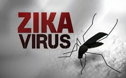 Bộ Y tế lo ngại bùng phát dịch Zika