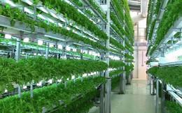 135.000 tỷ cho vay nông nghiệp công nghệ cao