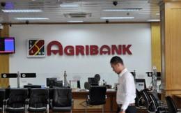 Agribank xiết nợ đất và quyền khai thác khoáng sản của Công ty Khoáng sản Miền Trung tại Bình Định