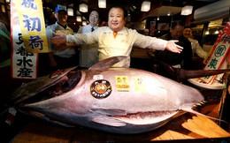 Cá ngừ Nhật giá hơn 630.000 USD trong phiên đấu giá đầu năm