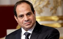 Chủ tịch nước chủ trì lễ đón Tổng thống Ai Cập