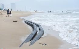Bãi biển Đà Nẵng 'kêu cứu'