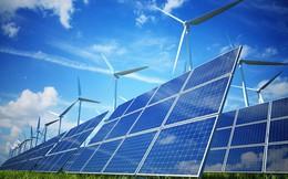 Sau công ty điện mặt trời tại Long An, Điện Gia Lai tiếp tục thành lập công ty nữa tại Bình Thuận