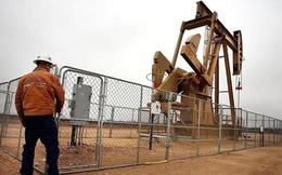 Giá dầu giảm mạnh nhất từ tháng 1