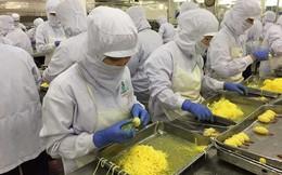 Hàng Việt xuất thô, Trung Quốc hưởng lợi