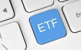 SSI Research: Quỹ FTSE sẽ thêm PLX, TCH, loại BHS khỏi danh mục quý 3 còn MVIS không thêm cổ phiếu