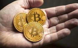 5 chiến thắng của bitcoin trong năm 2017