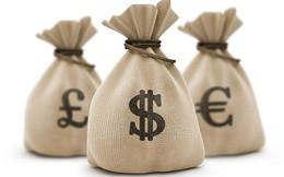 Vinataba Cát Lợi trả tiếp 20% cổ tức bằng tiền