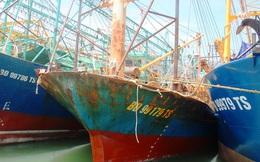 17 tàu vỏ thép hỏng nằm bờ ở Bình Định: Không xử lý nghiêm sẽ gây ảnh hưởng lớn