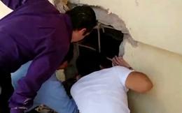 Những đứa trẻ được cứu sống thần kỳ trong trường học đổ nát vì động đất ở Mexico