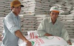 Doanh nghiệp kêu cứu Thủ tướng về thuế xuất nhập khẩu đường