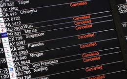 Thị trường chứng khoán Hồng Kông đóng cửa, 420 chuyến bay bị hoãn vì bão Hato