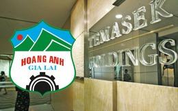 Không phải Temasek, 6 cá nhân trong nước mới là những người nhận về 137,5 triệu cổ phiếu HAGL vừa được chuyển đổi