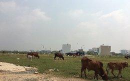Dân Sài Gòn từng ngày chờ thoát nạn quy hoạch 'treo'