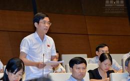 Đại biểu Quốc hội: Tăng trưởng kinh tế của các quý không theo logic thông thường!