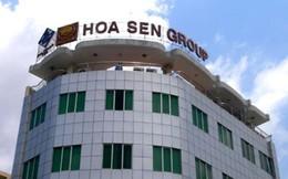 Dragon Capital lại trở thành cổ đông lớn của Tập đoàn Hoa Sen