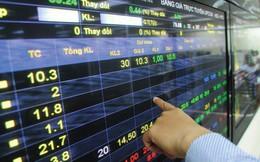 300 quyết định xử phạt về chứng khoán và thị trường chứng khoán năm 2017
