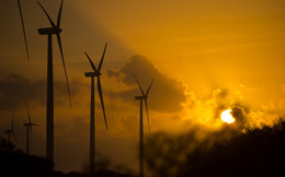 Điện gió và điện mặt trời sắp rẻ hơn nhiệt điện