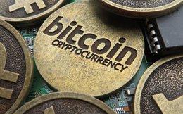 Không cấm nhập nhưng cũng chưa được định danh, lô máy đào bitcoin bị mắc kẹt chờ ý kiến ba Bộ