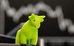 Khối ngoại tiếp tục mua ròng trên HoSE, VnIndex nhẹ nhàng vượt ngưỡng 930 điểm