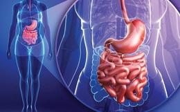 6 dấu hiệu cảnh báo hội chứng rò rỉ ruột
