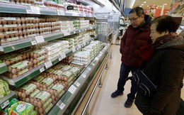 Hàng loạt nước Châu Á cấm nhập khẩu gia cầm Mỹ vì cúm gà