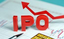 DNNN lập hồ sơ IPO phải kèm hồ sơ đăng ký lên sàn, có thể bán dựng sổ từ năm 2018
