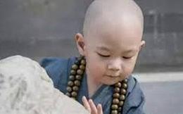 Mang đá đi bán, một lời dặn của sư thầy giúp tiểu hòa thượng có được thứ quý giá nhất đời
