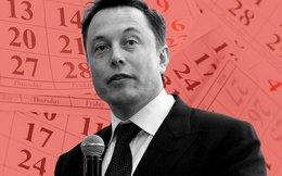 """Siêu nhà máy pin Gigafactory của Elon Musk sẽ bị Trung Quốc """"chôn vùi""""?"""